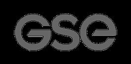 gse grey logo
